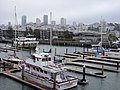 Pier 39 Seals - panoramio.jpg