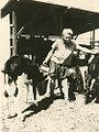 PikiWiki Israel 13577 Animal Industries at Kibbutz Ramat Yohanan.jpg