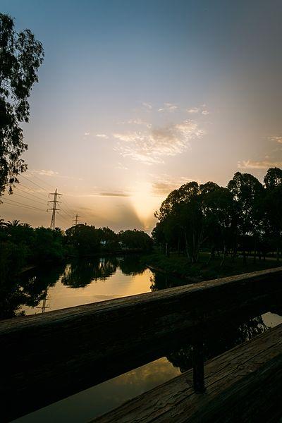 פארק הירקון - על גדות הנחל