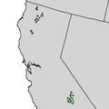 Pinus balfouriana range map 2.png
