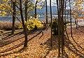 Poertschach Halbinselpromenade Landspitz Herbstlaub 12112015 8909.jpg