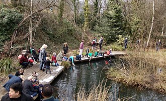 London Wildlife Trust - Image: Pond Dippers on Frog Day in Gunnersbury Triangle