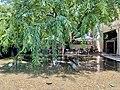Pond at QAG Cafe, Queensland Art Gallery, Brisbane.jpg