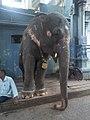 Pondicherry (8747031885).jpg