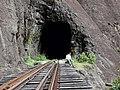 Ponte e Túnel - panoramio.jpg