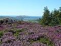 Pookeen, Co. Cork, Ireland - panoramio - georama.jpg