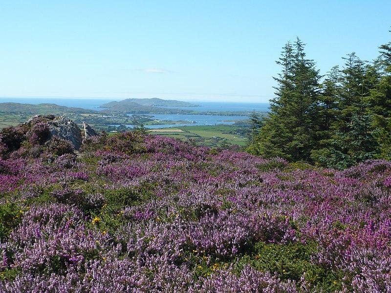 File:Pookeen, Co. Cork, Ireland - panoramio - georama.jpg