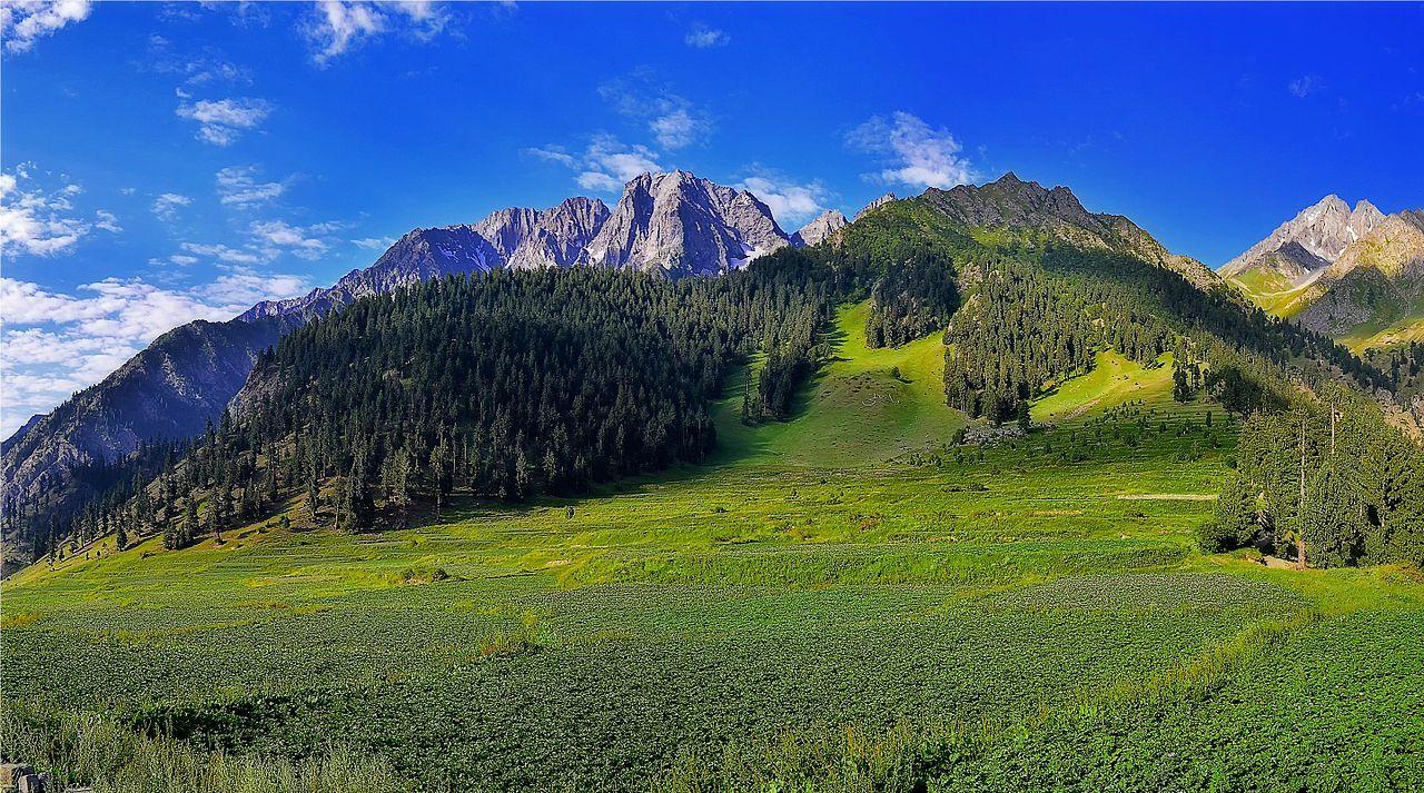 File:Potato Fields, Naltar, Gilgit Baltistan.jpg ...