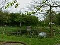Prairie humide et mare Bailleul jardin botanique.jpg