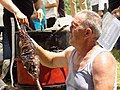 Preparation of smoked carp at the Carp Day Festival in Plavnica, Montenegro 05.jpg