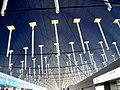 Pudong Airport Ceilinnnnnnnnnnnnnnnnnnn (2879273690).jpg