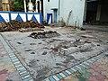 Pyre Platform - Banstala Crematorium Complex - 26 Gangadhar Mukherjee Road - Howrah 20170627151241.jpg
