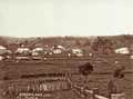 Queensland State Archives 2515 Town of Marburg c 1898.png