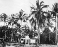 Queensland State Archives 887 Green Island North Queensland c 1928.png
