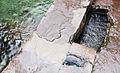 Quelle bei Huanca.jpg