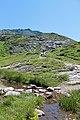 Réserve Naturelle de Passy - panoramio (23).jpg