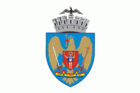 ROU Bucharest Flag1.png