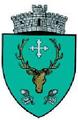 ROU SV Patrauti CoA.png