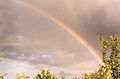 Rainbow, Sypniewo, Poznan, 1999.jpg
