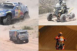 Rally Dakar 2009 winers.jpg