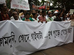 2013 Kamduni gang rape and murder case - The rally of intellectuals in Kolkata, against at Kamduni violence