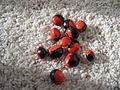 Redandblackbeans.JPG