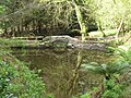 Reflections in a pool - geograph.org.uk - 789541.jpg