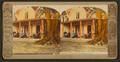 Residence of Harriet Beecher Stowe, Florida, from Robert N. Dennis collection of stereoscopic views 3.png