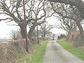 Rhedynog Felen Bach - geograph.org.uk - 730535.jpg