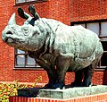 Rhinoceros Sculpture, Biological Sciences Building, Harvard University, Cambridge, Massachusetts.JPG