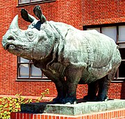 Rhinoceros sculpture, Biological Sciences Building, Harvard University, Cambridge, Massachusetts.