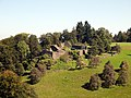 Richterswil-Ruine-Altwädenswil-9169053B.jpg