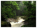 Rio Corujas. Vale do Ribeira.jpg