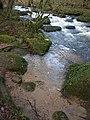 River Bovey below Clam Bridge - geograph.org.uk - 1084507.jpg