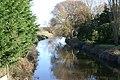 River Brue - geograph.org.uk - 109538.jpg