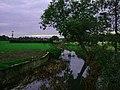 "River Colne from ""Newbridge"" - geograph.org.uk - 69260.jpg"