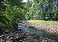 River Cover, nr. Braidley - geograph.org.uk - 1567967.jpg
