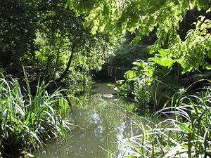 River Peck - The River Peck in the Japanese Garden, Peckham Rye park