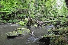 River Prüm between Prümzurlay und Irrel, Rhineland-Palatinate, Germany.JPG