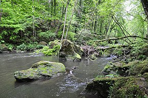 River Prüm between Prümzurlay und Irrel, Rhineland-Palatinate, Germany.JPG