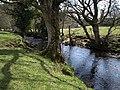 River Teign at Whiddonpark House - geograph.org.uk - 1243150.jpg