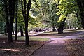Rivne, Rivnens'ka oblast, Ukraine - panoramio (42).jpg