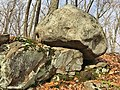 Rock With Fish Features in West Hartford Reservoir.jpg