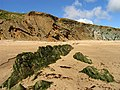 Rock formations on Clogher Beach - geograph.org.uk - 16924.jpg