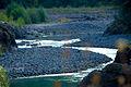 Rosemary Anderson HS Goes to Marmot Dam (8055061737).jpg
