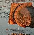 Rostiges Rohr in der Nordsee.jpg