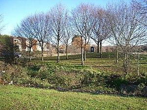 Chingford Hatch - Chingford Hatch