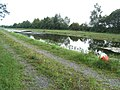 Royal Canal in Begnagh, Co. Longford - geograph.org.uk - 2004400.jpg