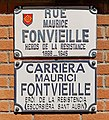 Rue Maurice-Fonvieille (Toulouse).jpg