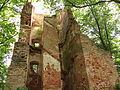 Ruiny Pałacu Biskupiego w Broku nad Bugiem 3.JPG